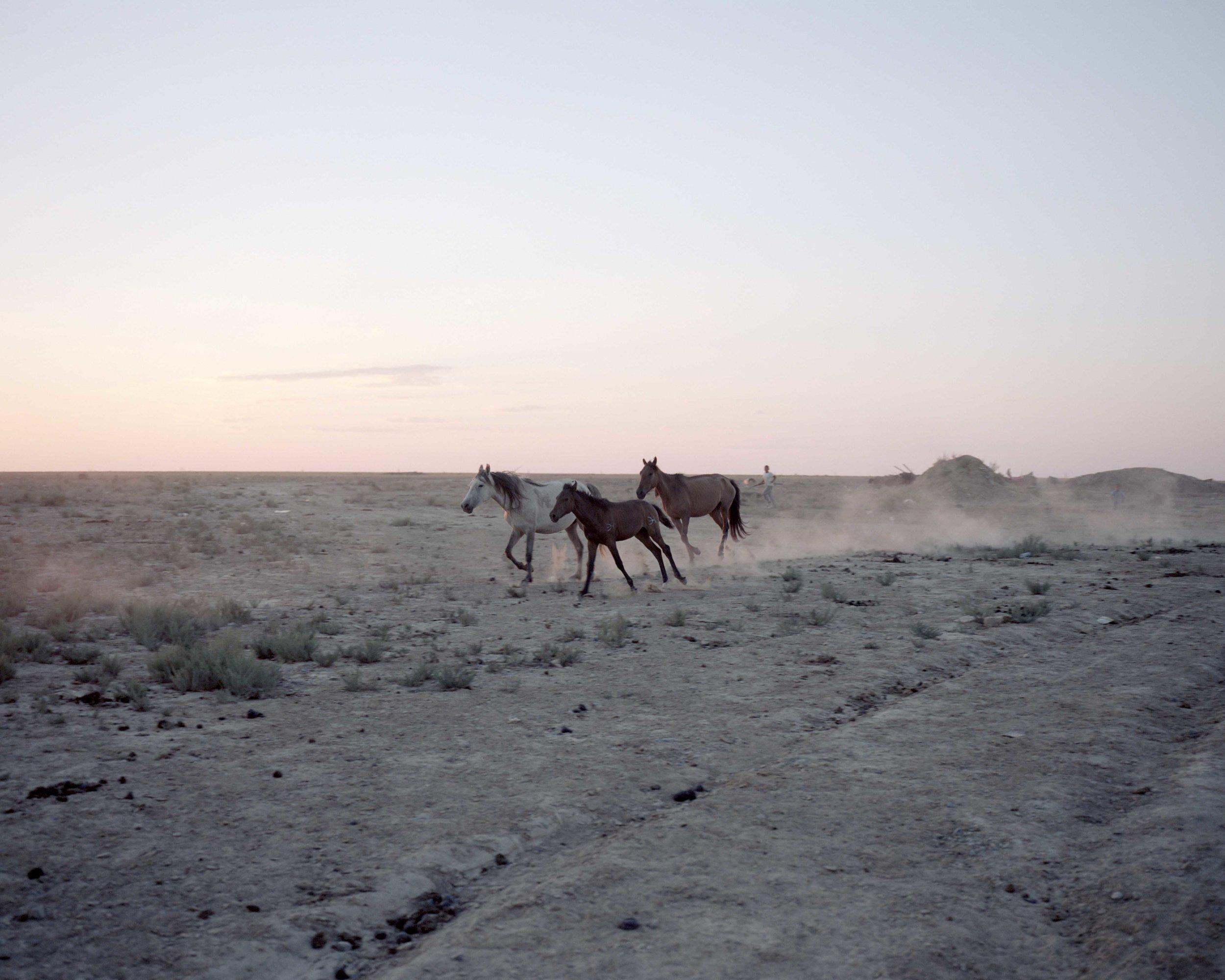 PARKER_Mongolia_3.JPG
