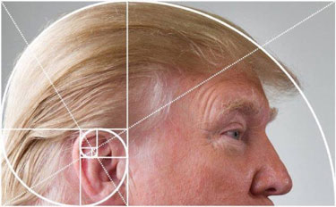 ...You may even find the Golden Ratio in some unexpected places!
