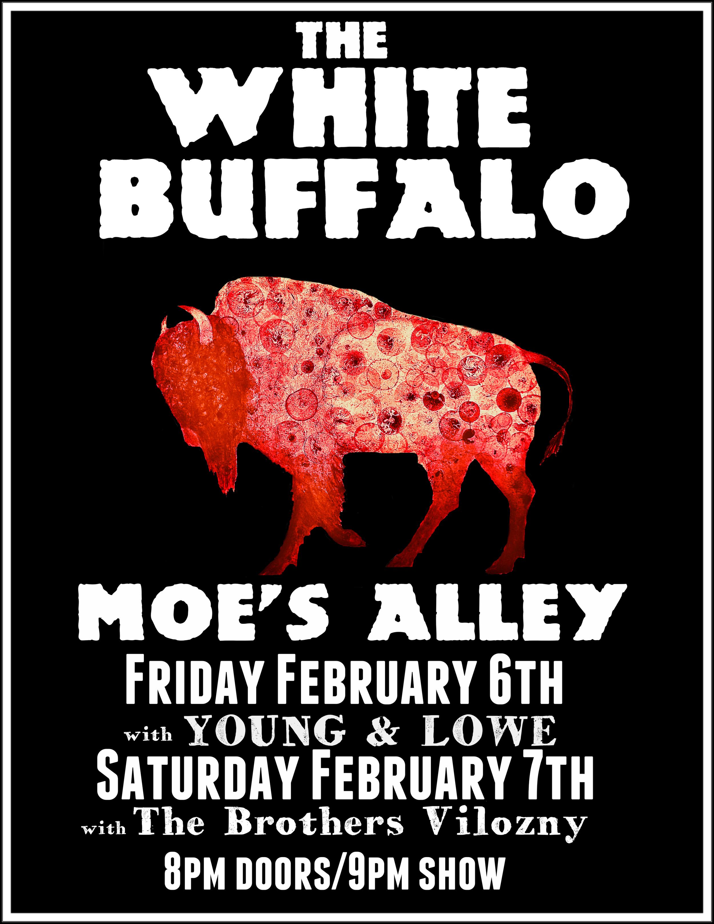 white buffalo 2-6-15.jpg