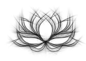 Lotus_brightened.jpg