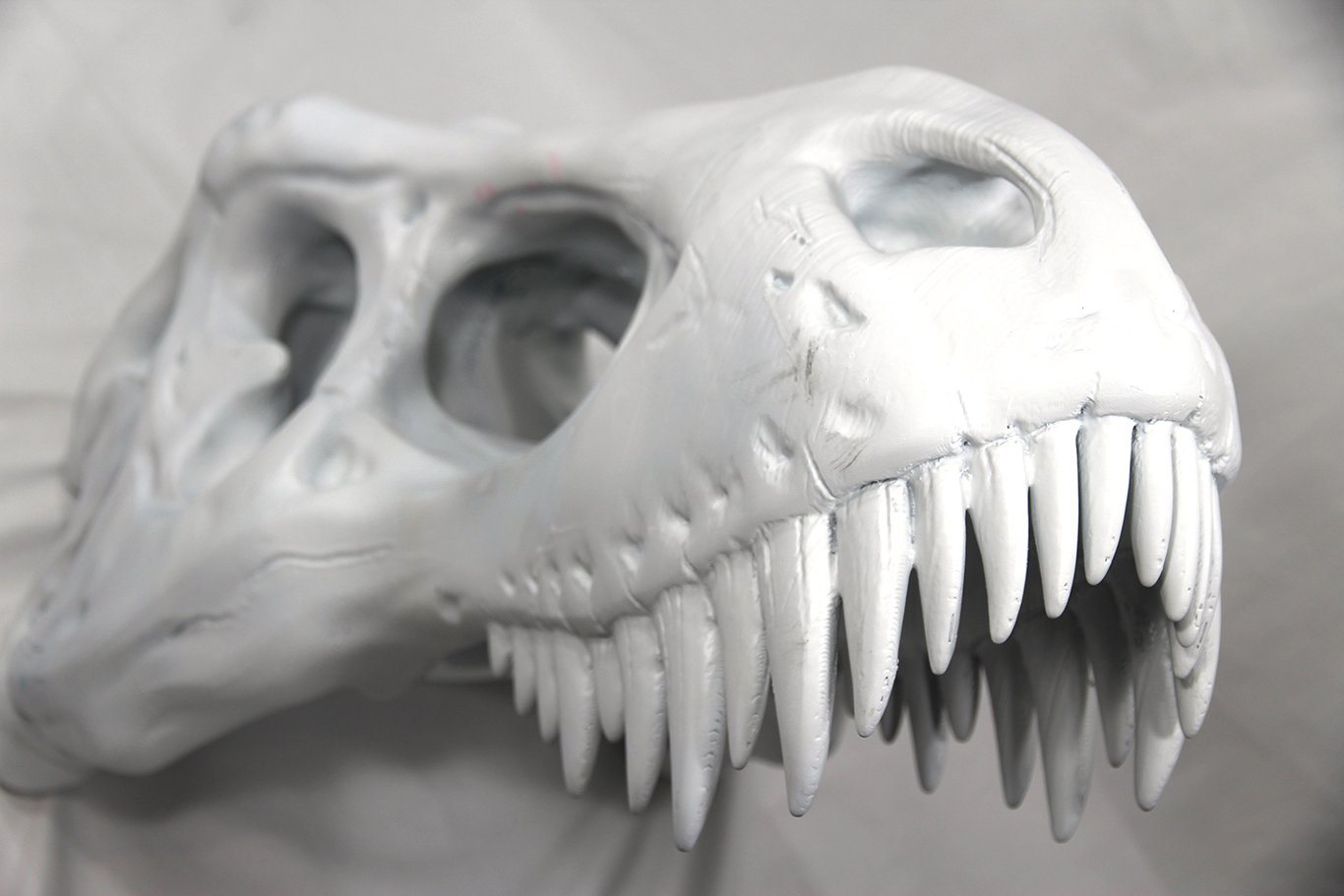 Copy of T-Rex Skull
