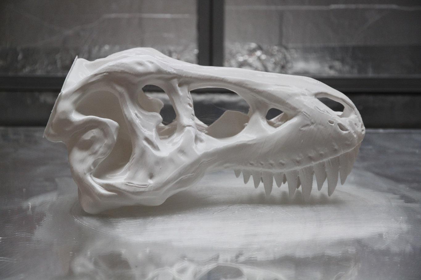 """T-Rex Skull 30""""(0.76m) $450"""
