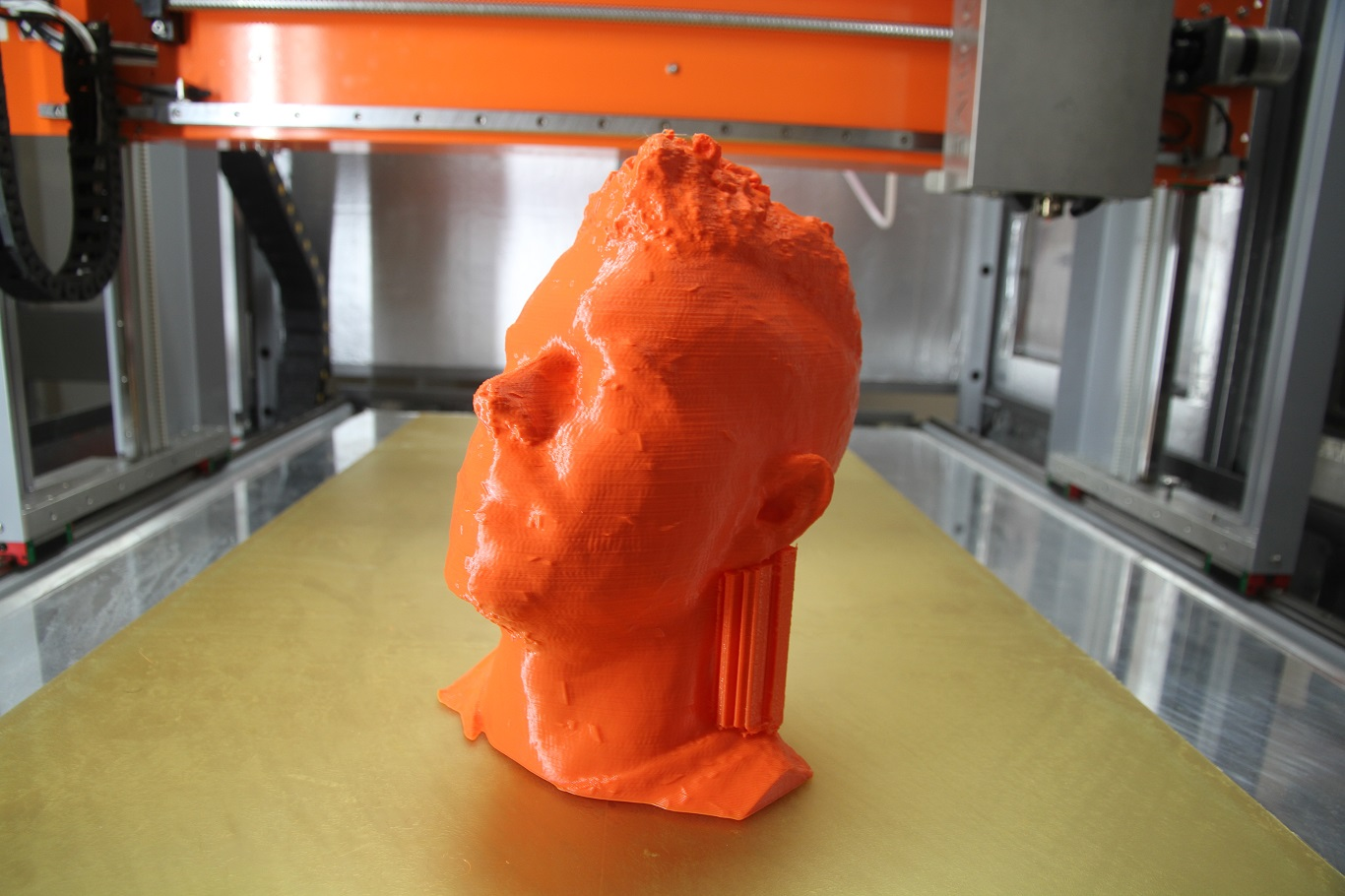 3D Scaned Printed Head -Life Size- $500