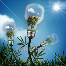 bulb01.jpeg