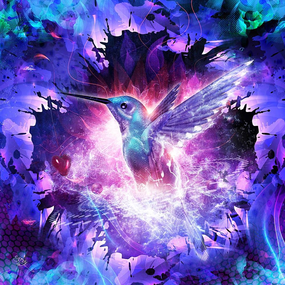 """ Hummingbird Love """