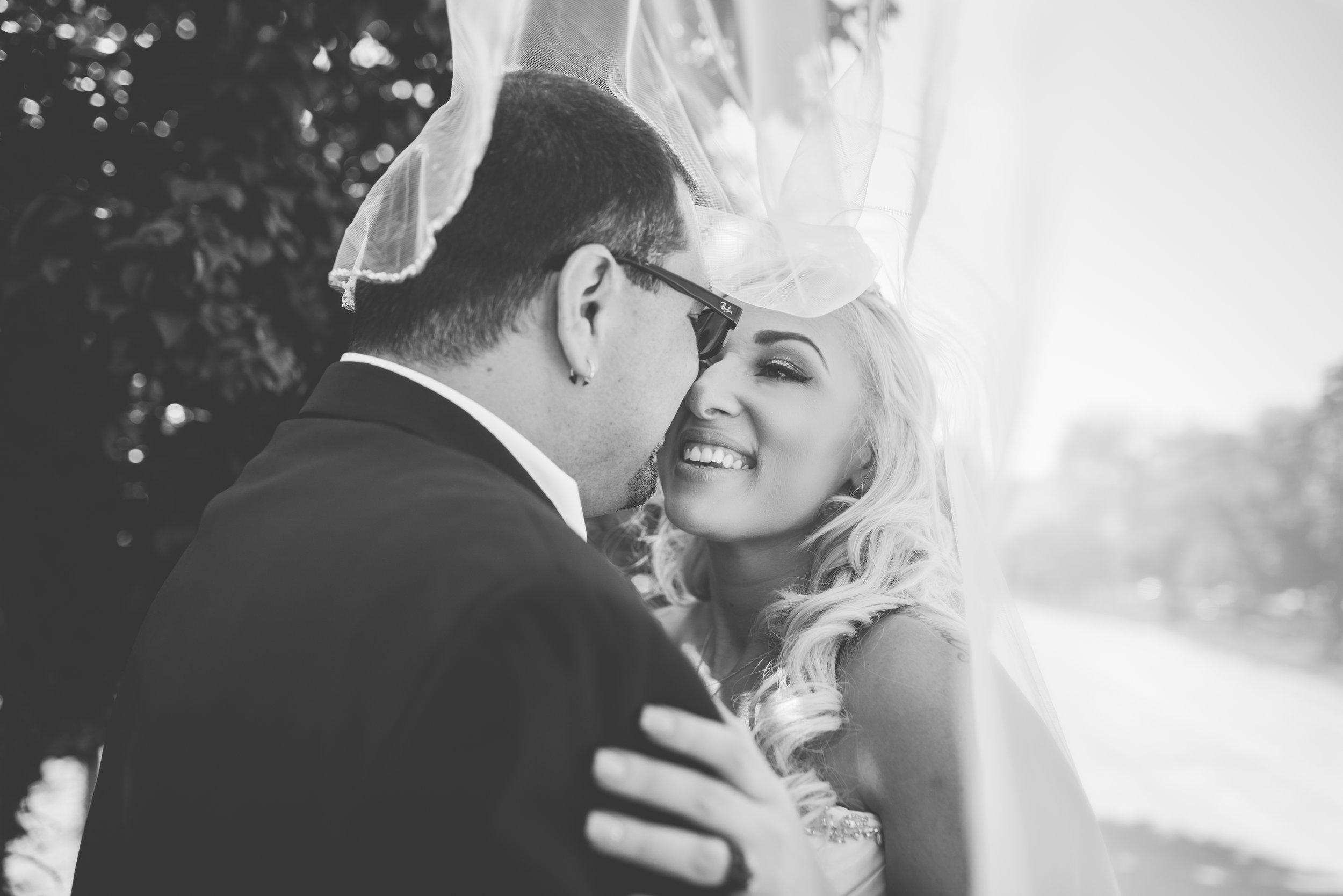 {Shier Wedding}