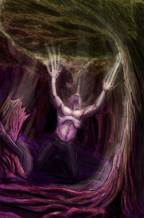 DEZ IMAGES vita_forest_pg2_lores.jpg