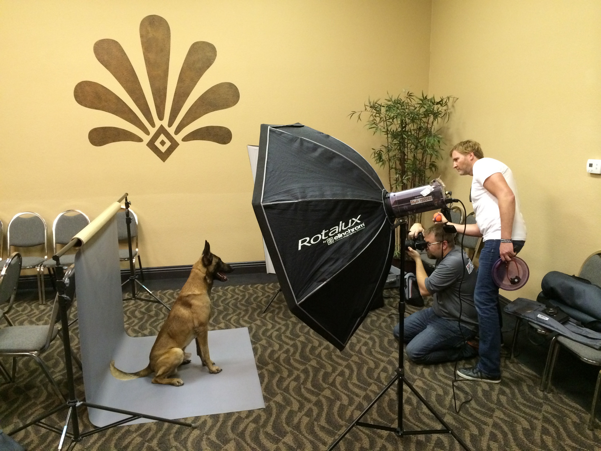 Behind the Scenes Pet Session- Taken with iPhone.