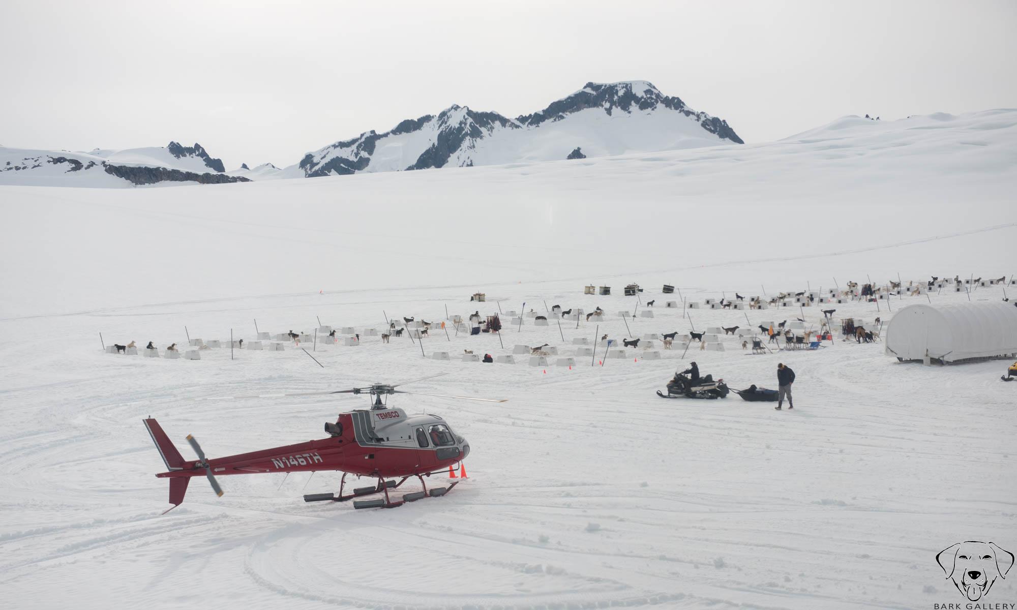 Dog Camp- Denver Glacier, Skagway, Alaska.