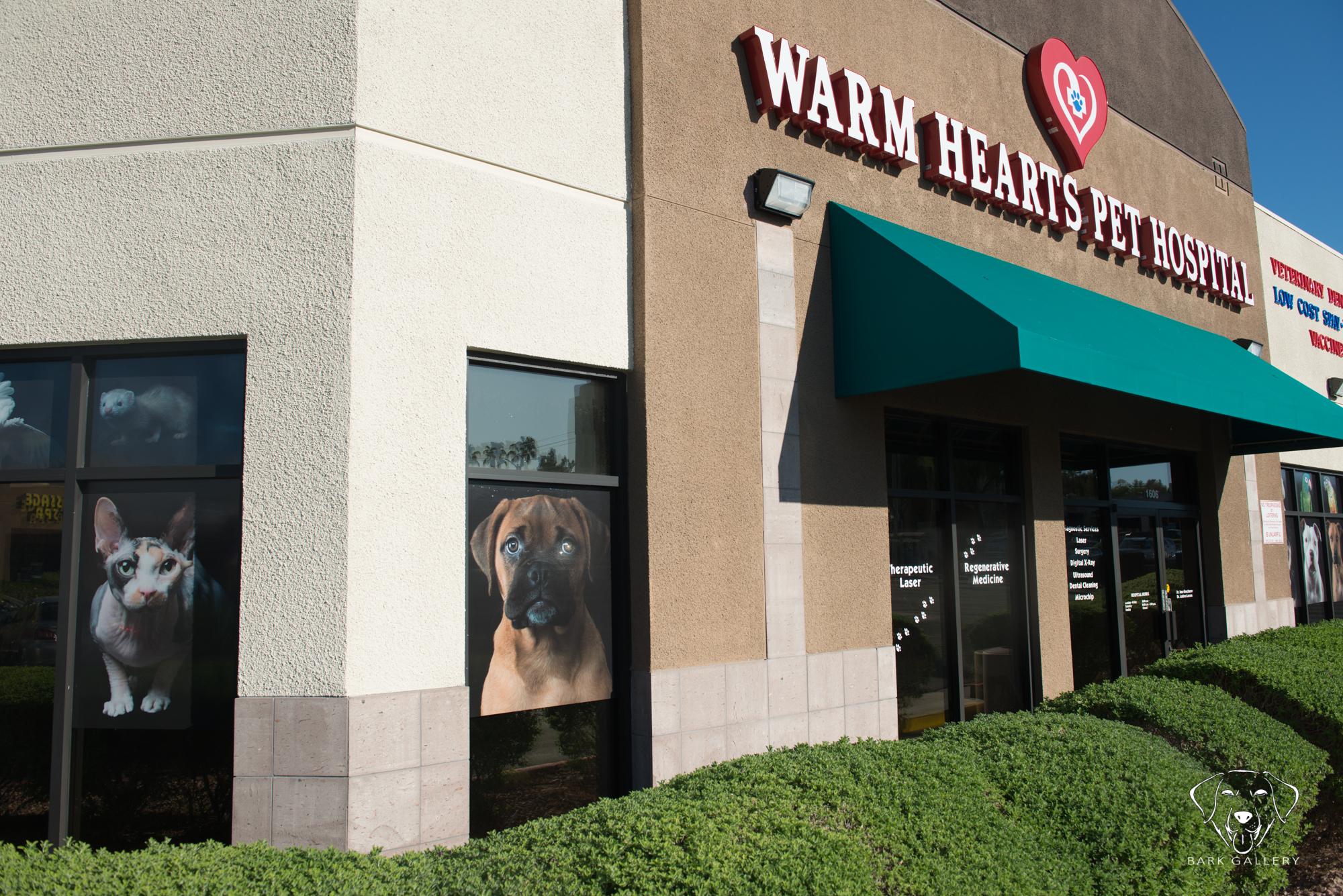 Warm Hearts Pet Hospital- Henderson, NV