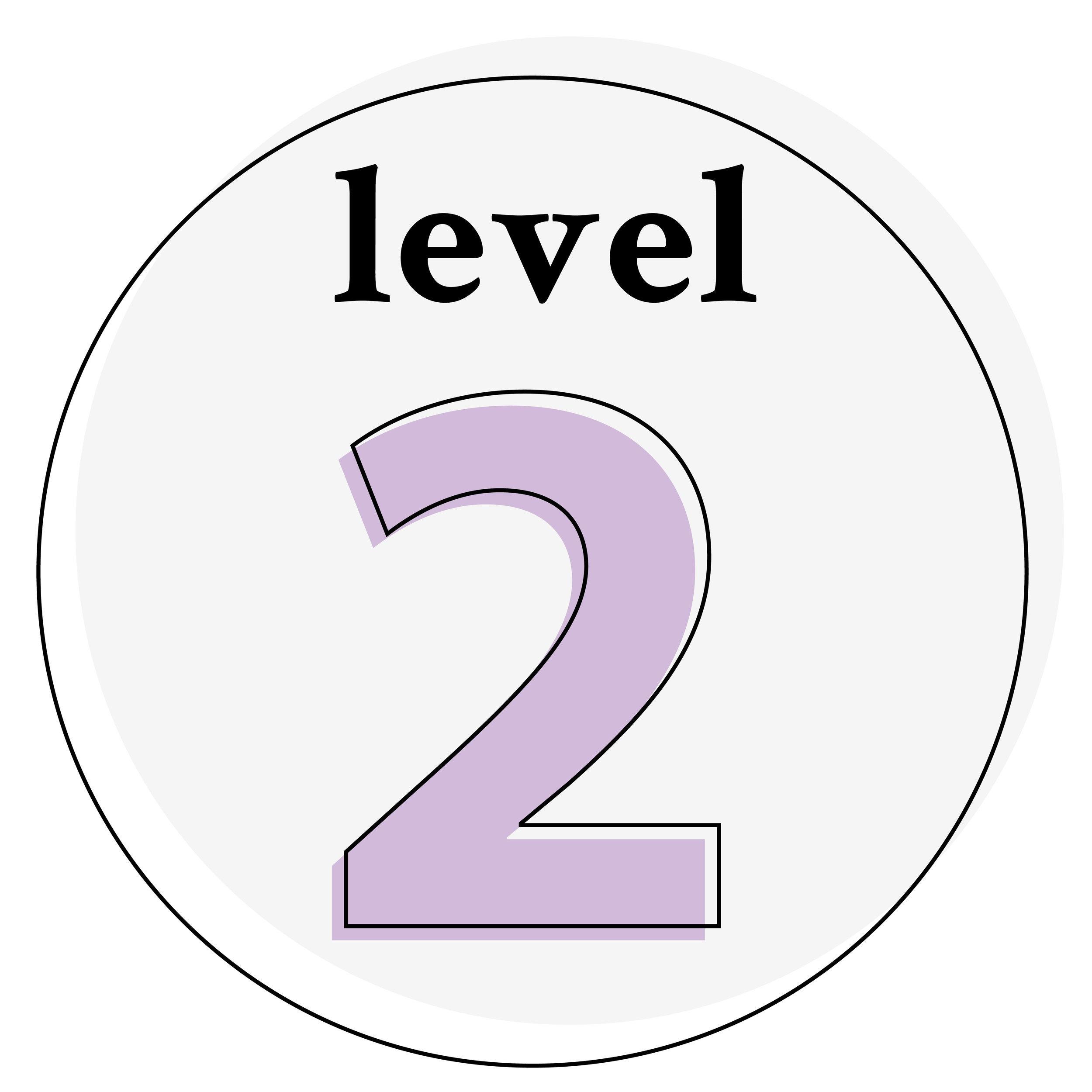 icon-level-2.jpg