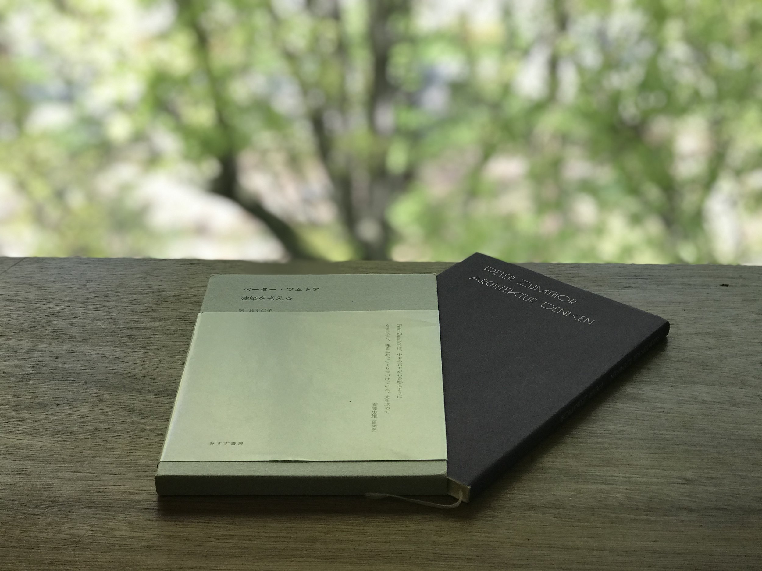 arbol-arbol-peterzumthor-book.jpg