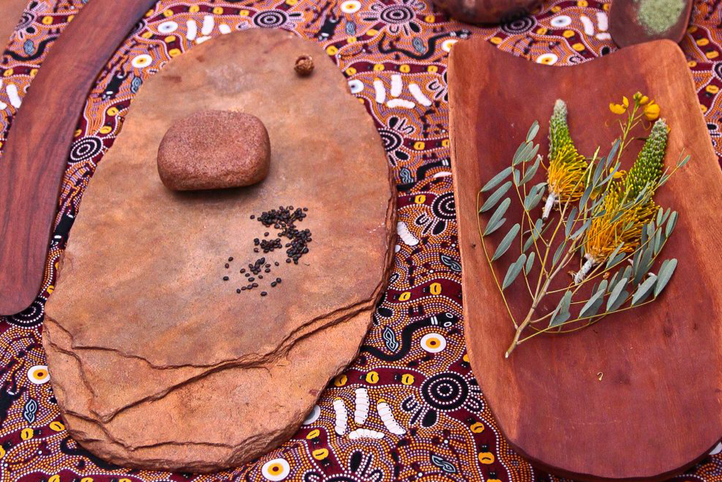 Bush Tucker near Uluru. Wattle seeds, Acacia (wattle) wood Coolamon and Chocolate wattle flower. Image courtesy of Lorraine Elliott at Not Quite Nigella.