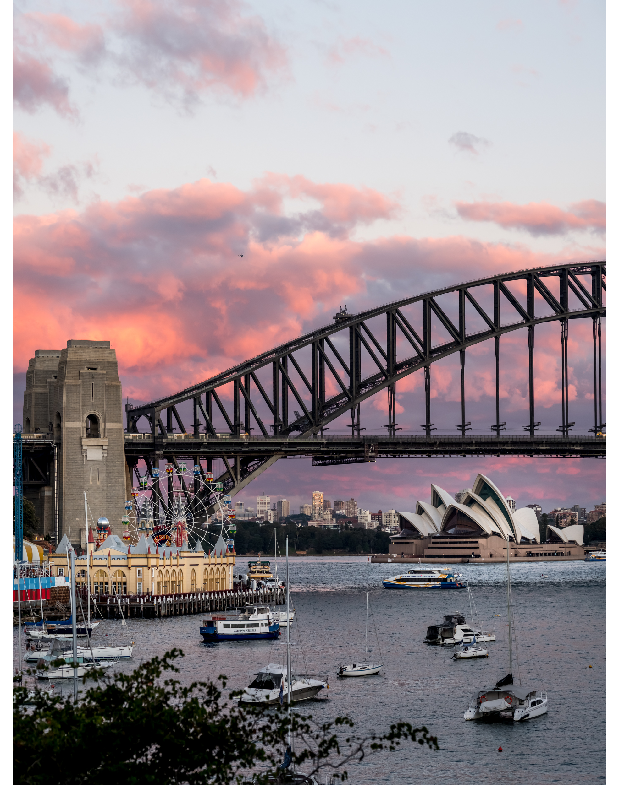 Sydney Photography courses sydney harbour 01.png
