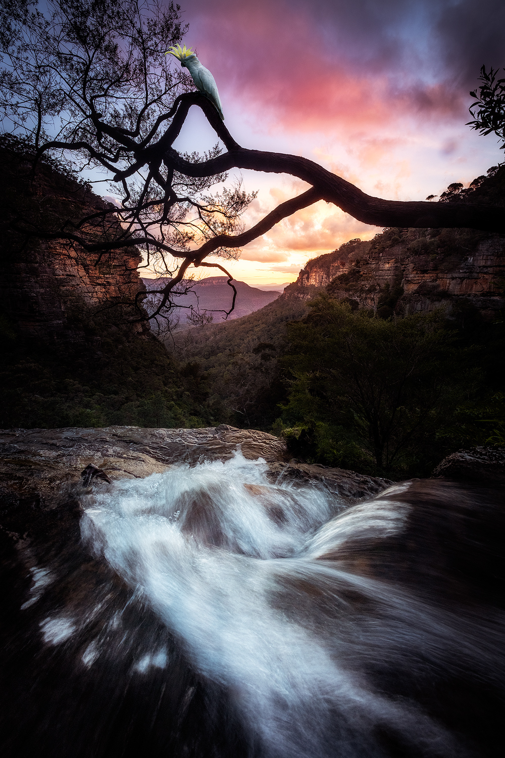 blue-mountains-sunset.jpg