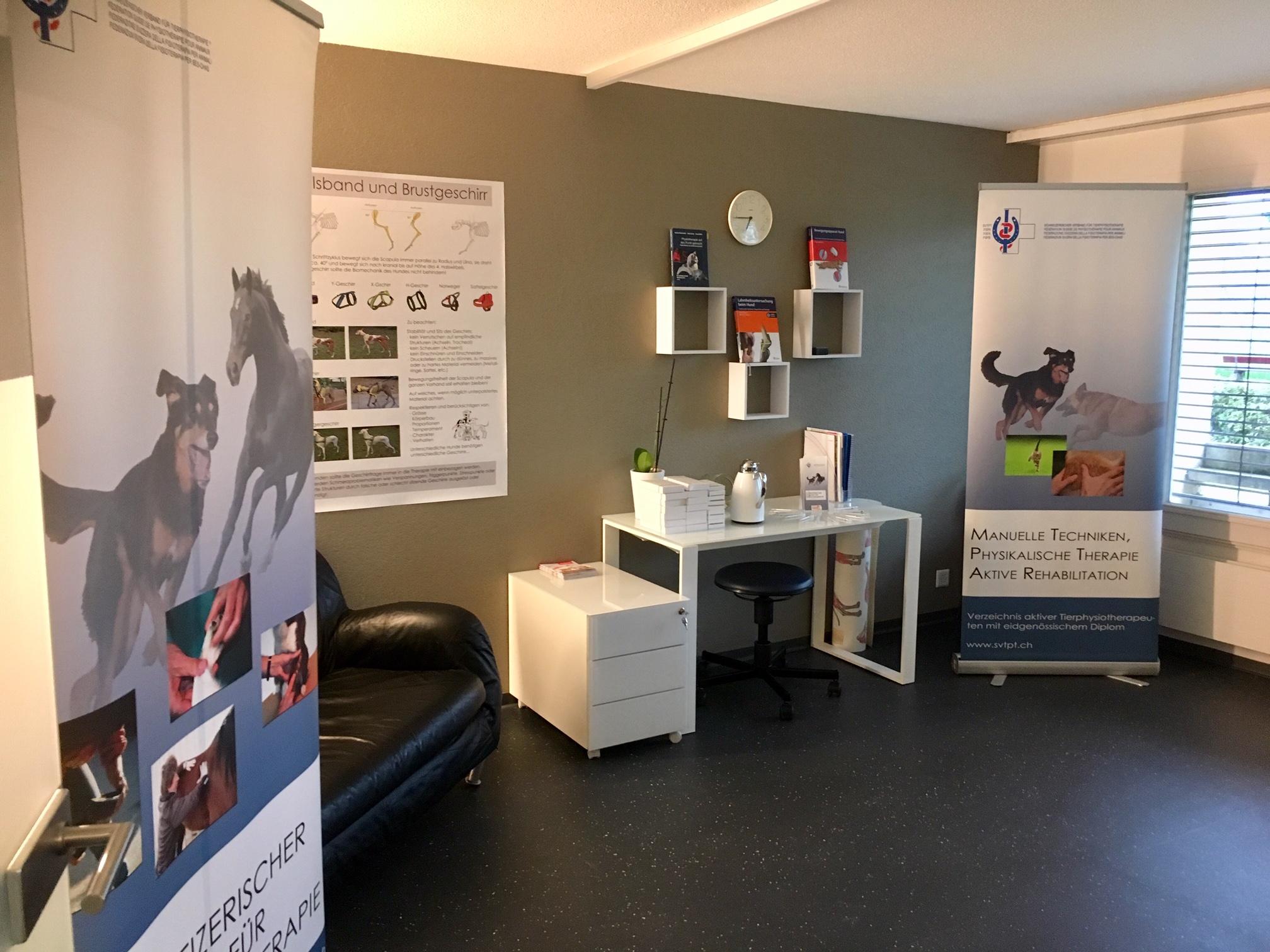 Stand der Tierphysiotherapie mit Material vom Schweizerischen Verband für Tierphysiotherapie in der neuen Räumlichkeit