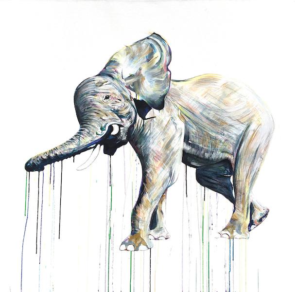 ElephantIV.HDG.jpeg
