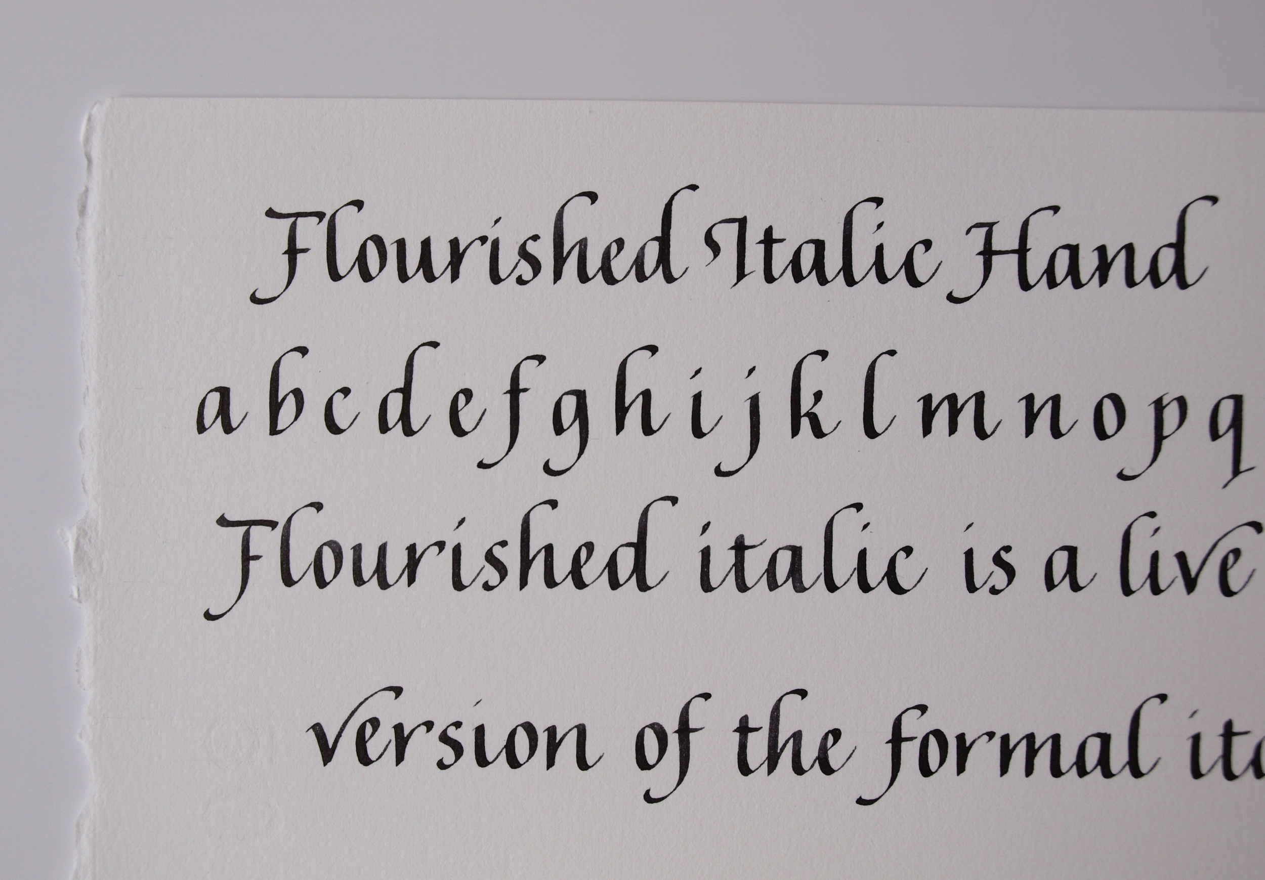 close up of Flourished italic hand.jpg