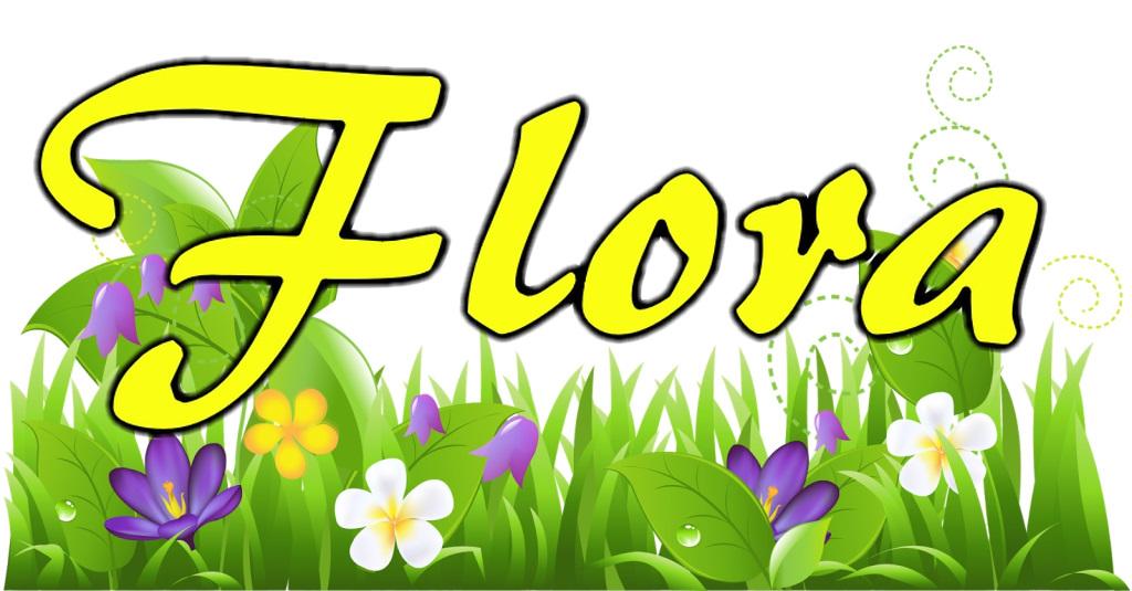 LA bicycle Flora flower field