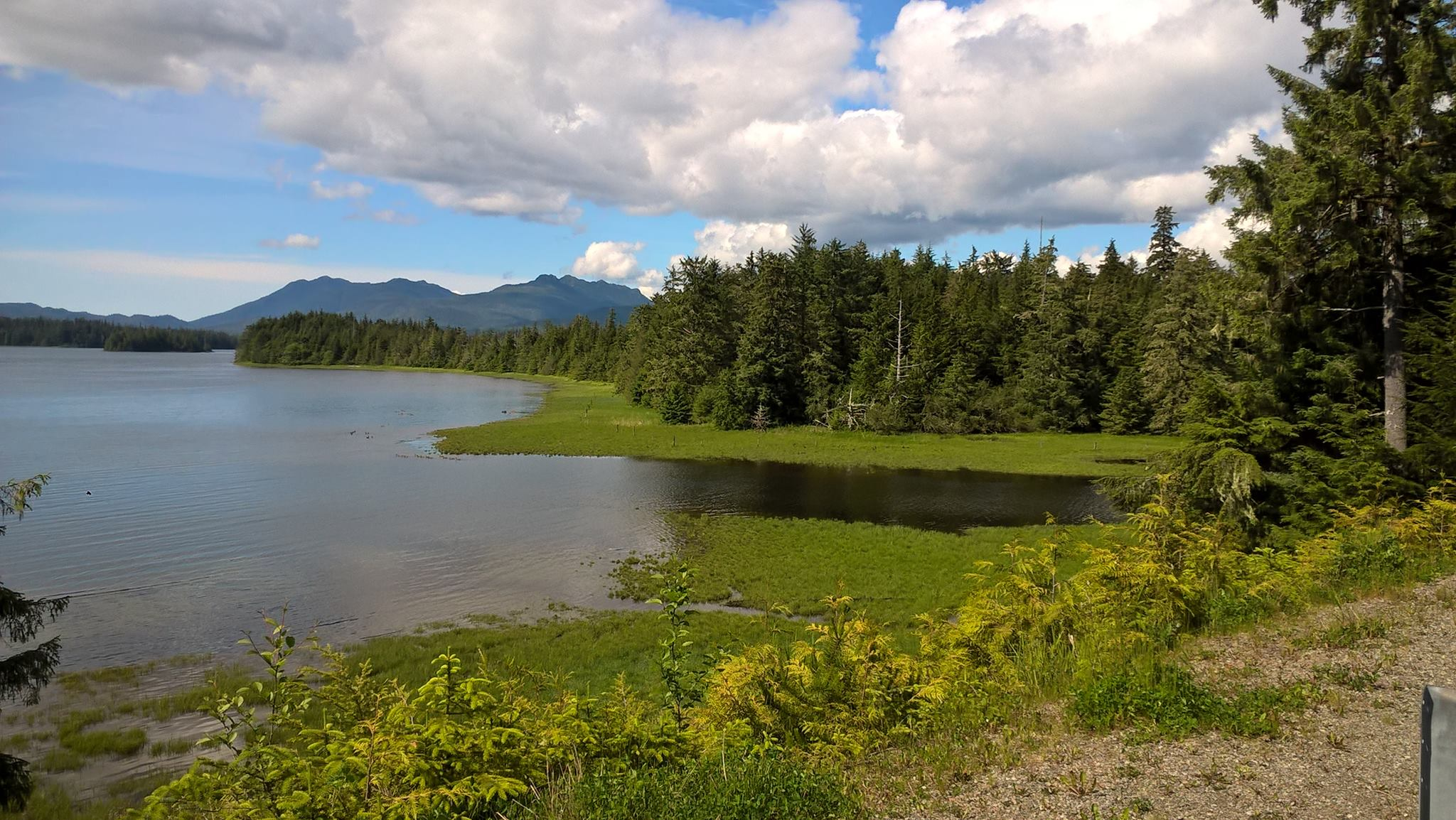 THE WATER'S EDGE, LIKE THIS BEAUTIFUL SPOT AT KLAWOCK, IS THE PERFECT PLACE TO SEE WILDLIFE. FIND A COMFORTABLE SPOT, SIT QUIETLY, AND ENJOY WHAT NATURE PRESENTS. IMAGE: THANKS TO BONNIE CHRISTINE AND ALASKA LIFE FACEBOOK PAGE.