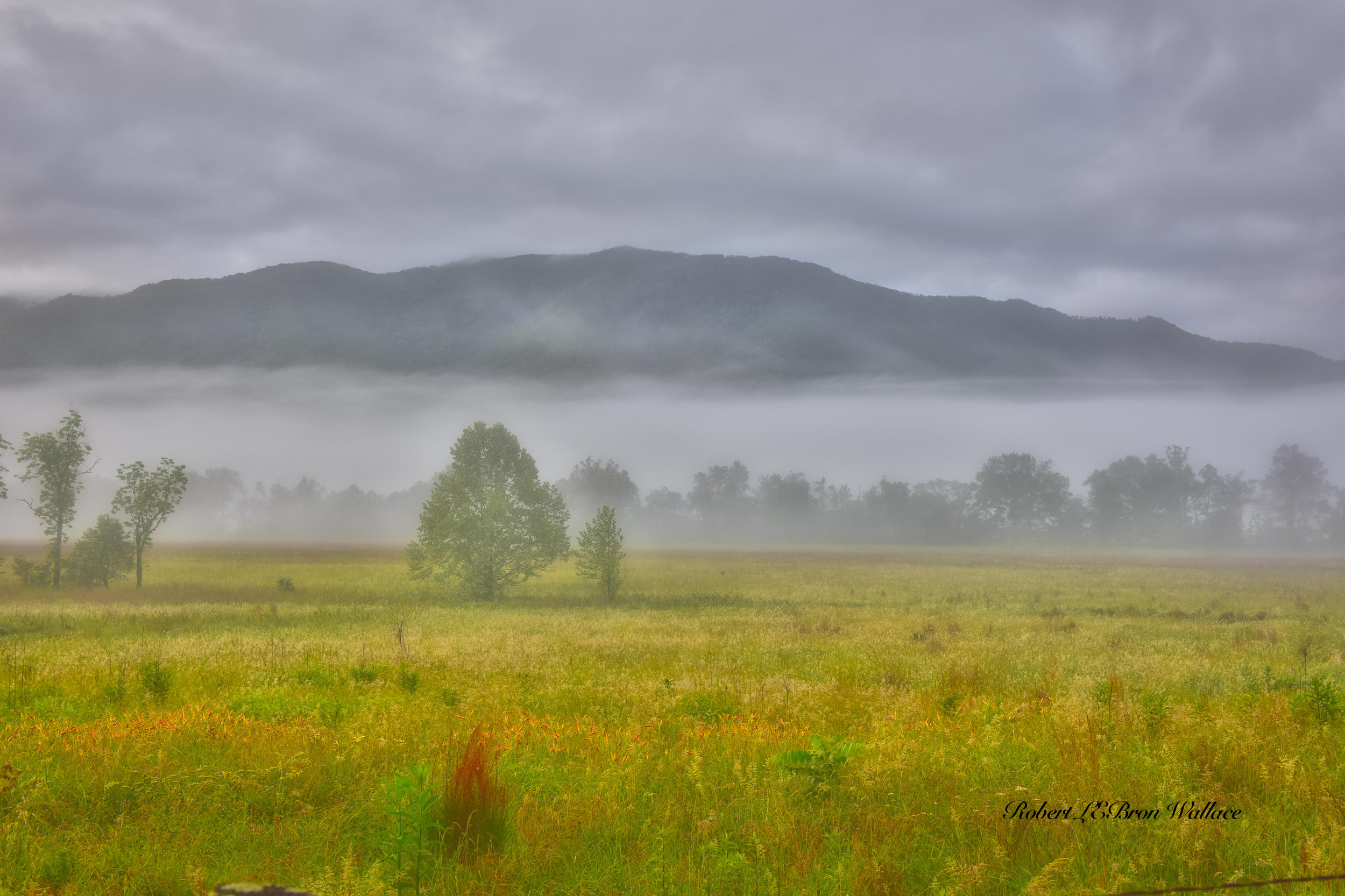 THE BLUE MIST FOREVER HOVERING OVER ITS PEAKS AND WILD FLOWER FILLED VALLEYS GIVES THE BLUE RIDGE MOUNTAINS A MYSTERIOUS OTHER-WORLDLY FEEL. IMAGE ROBERT LEBRON WALLACE.