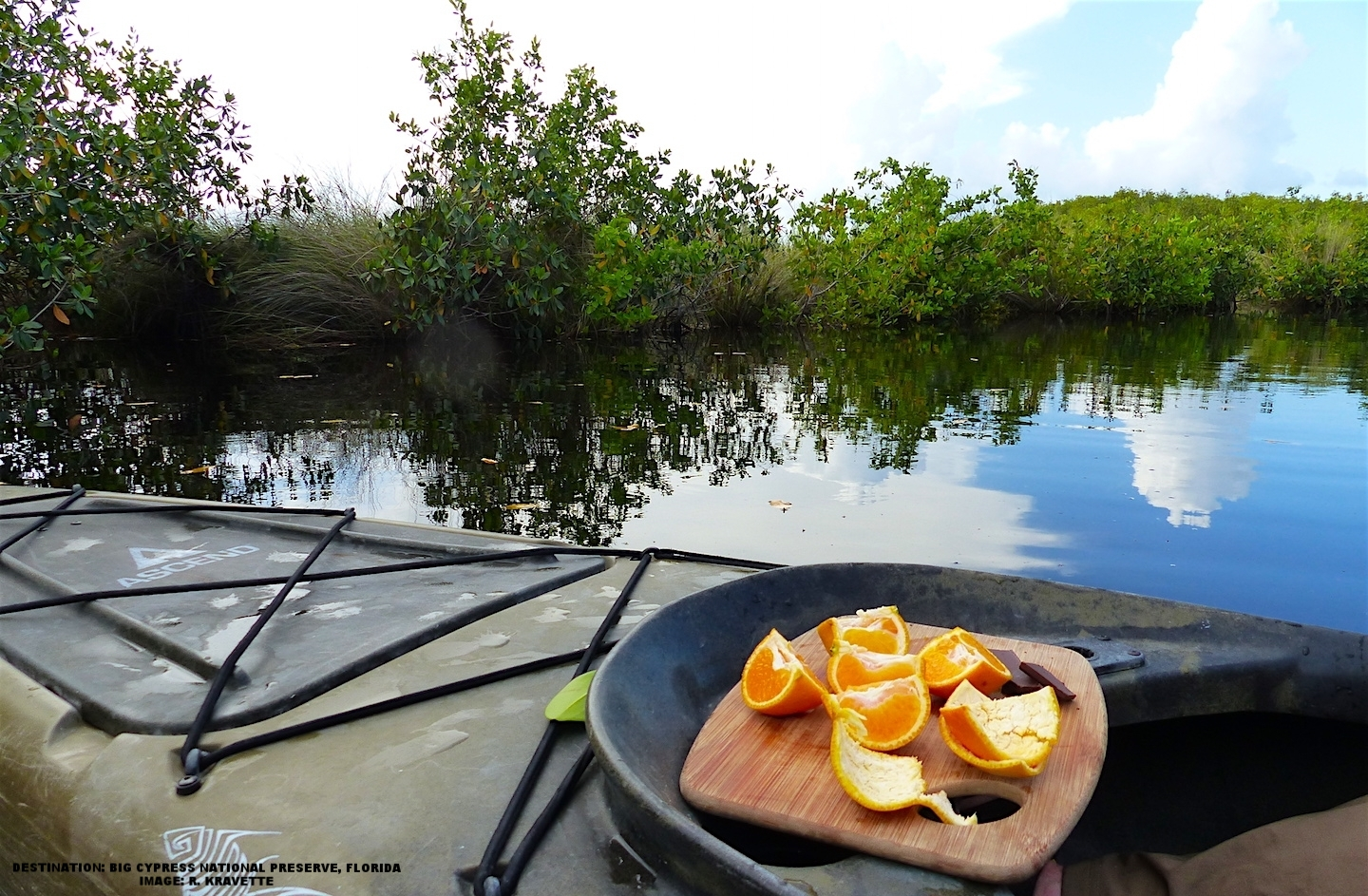 """OUR """"TOUR THE GLADES"""" KAYAK ADVENTURE INCLUDED THE SWEETEST ORANGES AND MOST DELICIOUS CHOCOLATE EVER. IMAGE: R. KRAVETTE"""