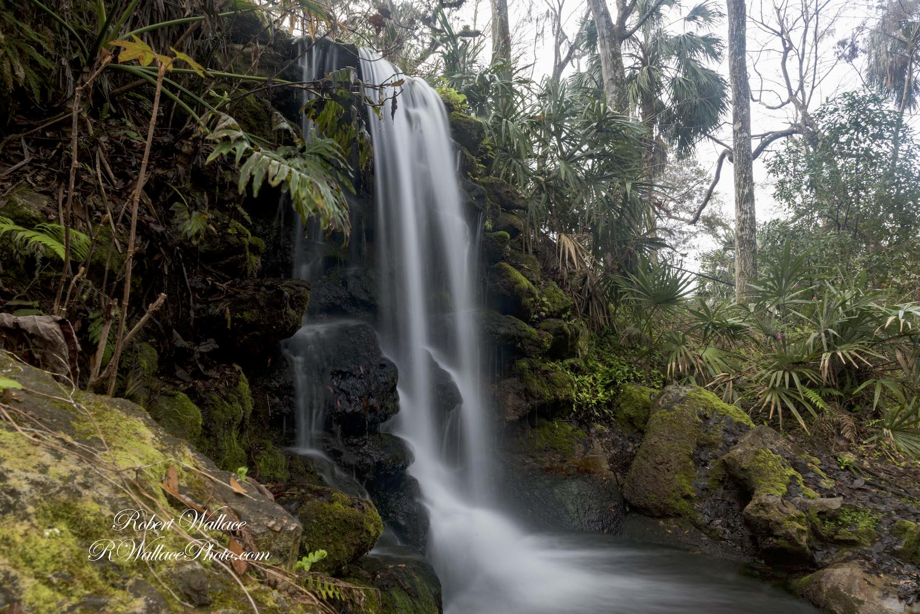 ONE OF THE WATERFALLS AT RAINBOW SPRINGS STATE PARK, AN OASIS OF NATURE CREATED ON THE SITE OF A DEFUNCT THEME PARK AND PHOSPHORUS MINE CLOSED IN 1970. IMAGE: ROBERT WALLACE RWALLACE PHOTO.COM