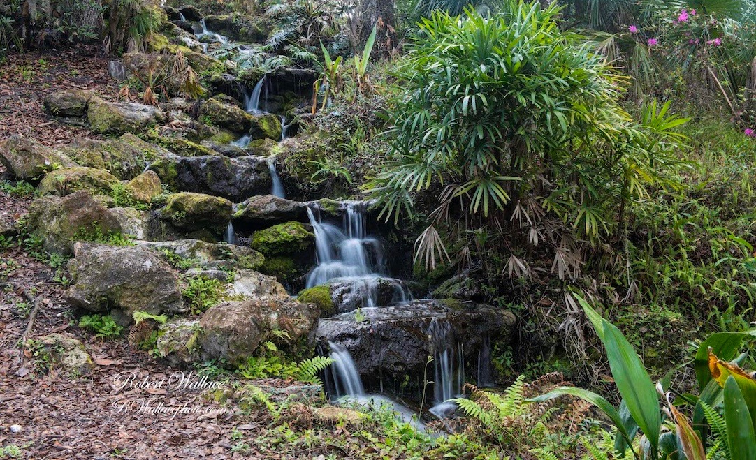 WHEN YOU ARE IN OR NEAR FLORIDA'S NATURE COAST VISIT RAINBOW SPRINGS STATE PARK. YOU WILL NOT BE DISAPPOINTED. IMAGE: ROBERT WALLACE, RWALLACE PHOTOS