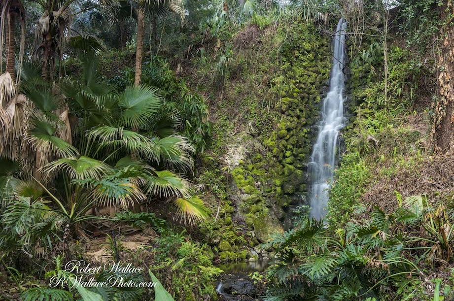 Waterfall-RainbowSPrings-State-Park-RWallace-photo.jpg