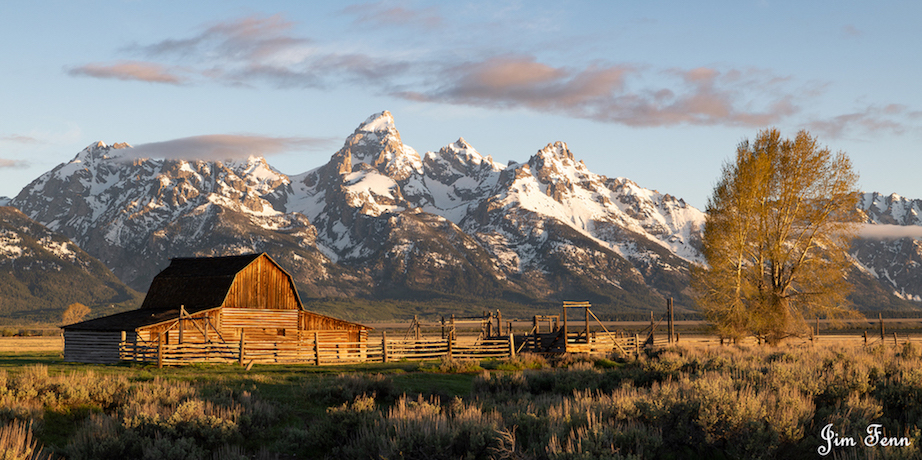 MOUTON BARN, THE GRAND TETON NATIONAL PARK, WWYOMING AT SUNRISE. A CHORUS OF COYOTES HOWLED ALL AROUND US. THIS IS MY HEAVEN. IMAGE: JIM FENNESSY