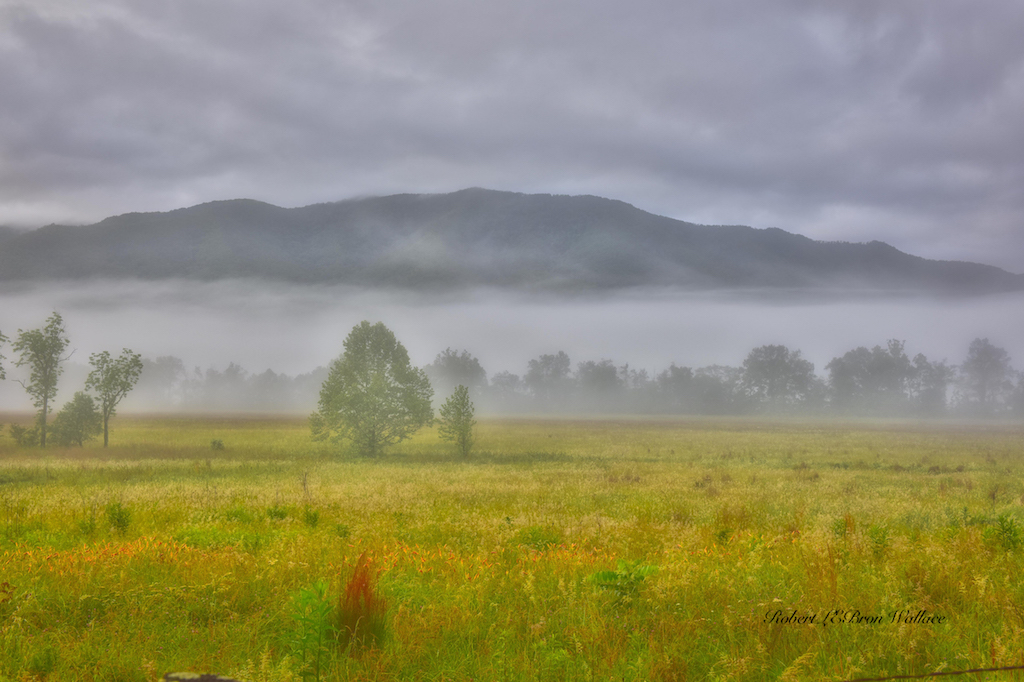 I TOOK THIS IMAGE OF THE CADE'S COVE VALLEY ON THE TENNESSEE SIDE OF THE GREAT SMOKIES NATIONAL PARK LAST TIME I WAS THERE, THIS TIME WAS JUST FOR WILDLIFE! IMAGE: ©ROBERT WALLACE