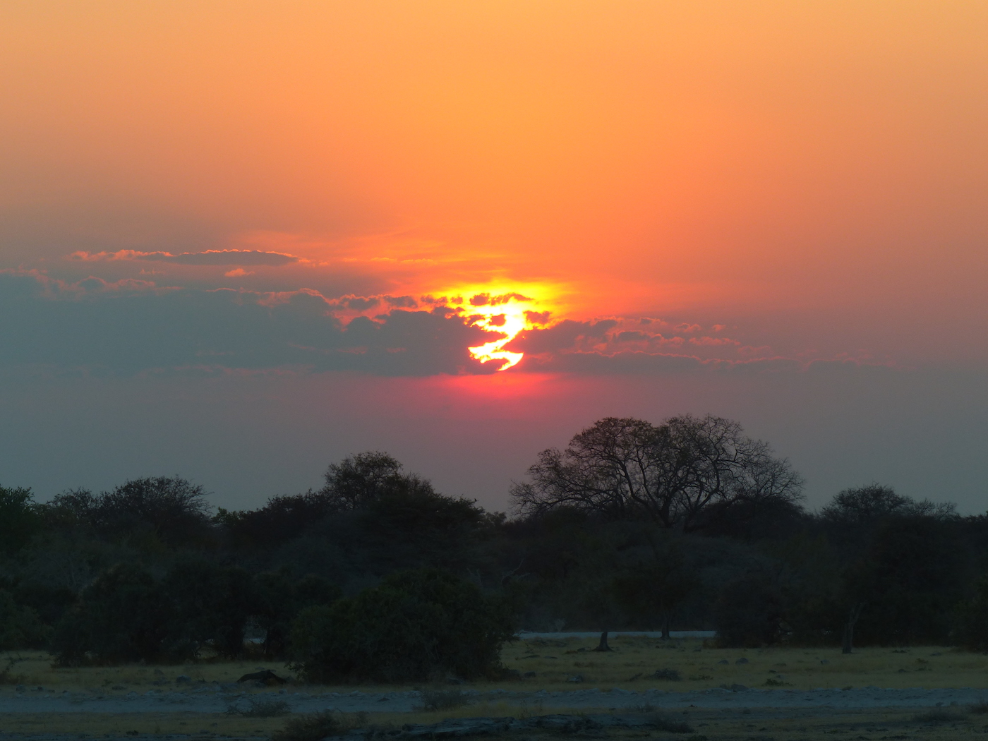 IT IS TIME. THE WORLD IS A BEAUTIFUL PLACE. YOUR VISIT CAN HELP PRESERVE IT. THIS IS ETOSHA NATIONAL PARK IN NAMIBIA. IT PROTECTS ELEPHANTS, LIONS, BLACK AND WHITE RHINO AND SO MUCH MORE. AND IT FILLS YOUR HEART WITH WONDER. IMAGE: LES MEDLEY