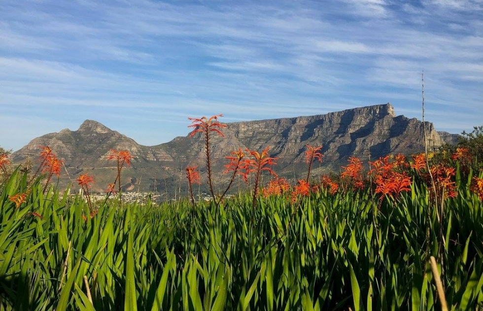 IN CAPE TOWN, SOUTH AFRICA, AGAINST THE BACKDROP OF ICONIC NATURAL WONDER, TABLE MOUNTAIN, 28 NATIONS SIGNED THE CAPE TOEN DECLARATION ON RESPONSIBLE TOURISM. IMAGE: THANKS TO #ILOVECAPETOWN