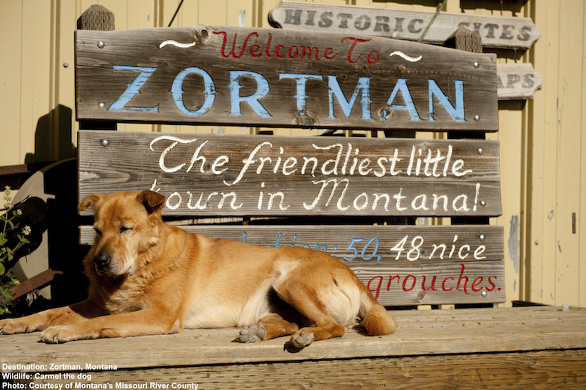 """HAVE NO DOUBT, CARMEL IS ALWAYS ON DUTY TO MAKE SURE THAT ZORTMAN LIVES UP TO ITS BOAST AS """"THE FRIENDLIEST LITTLE TOWN IN MONTANA."""" IMAGE: COURTESY OF MONTANA'S MISSOURI RIVER COUNTRY."""