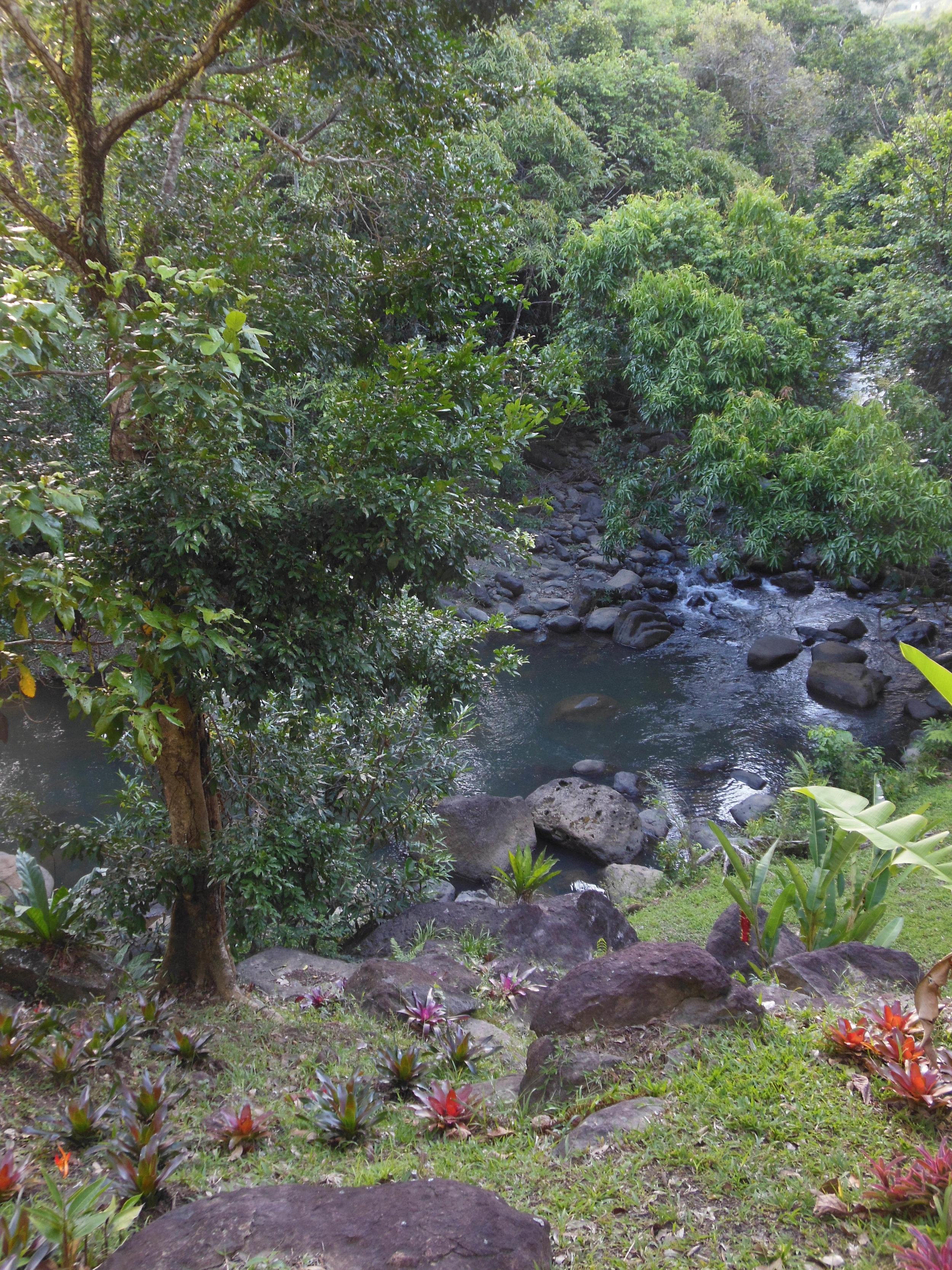 Gard. River DSCN2635.JPG