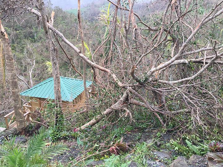 After Hurricane Maria, September 2017