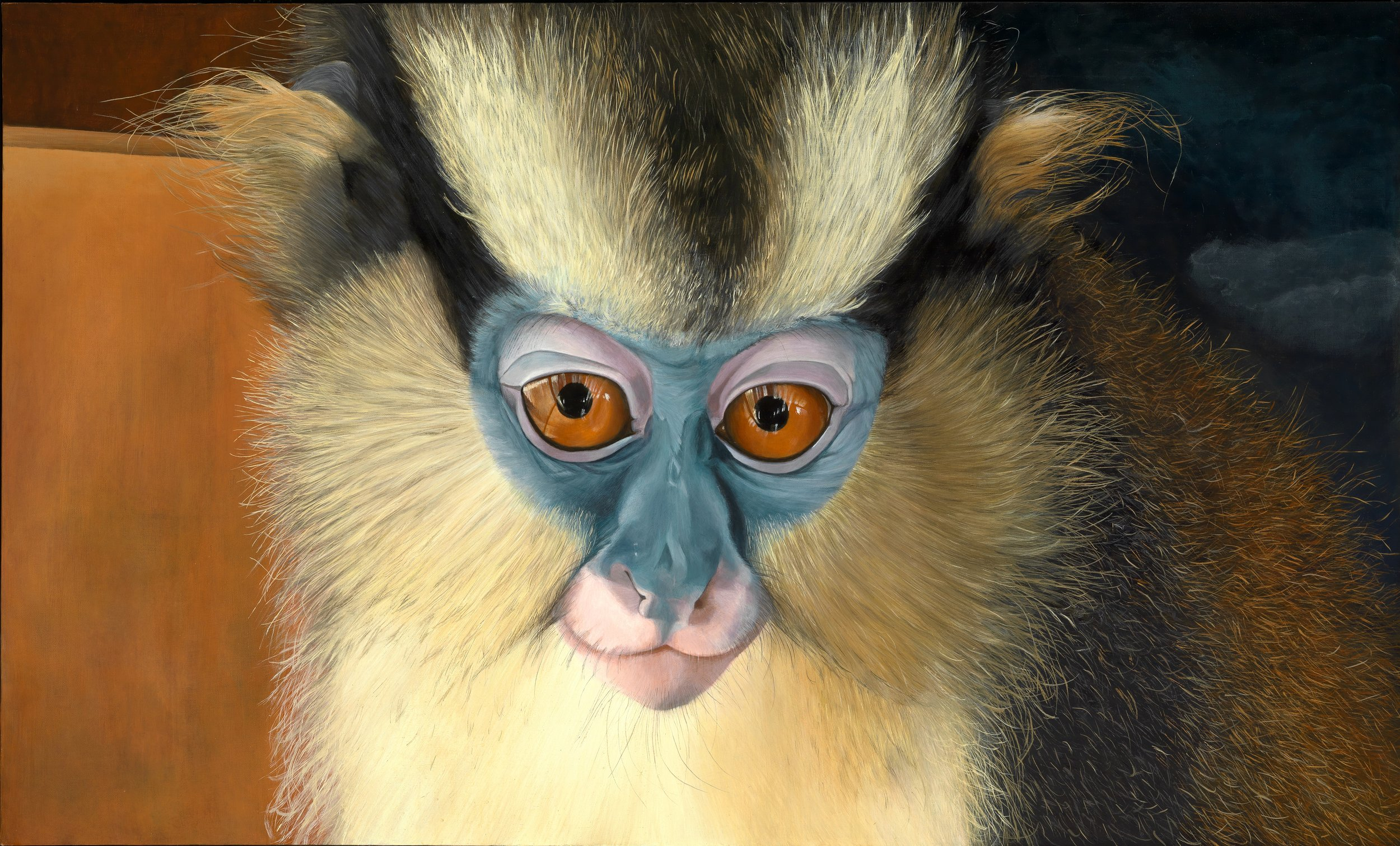 PORTRAIT OF YOUNG NUNU, A CROWNED GUENON, ACRYLIC ON CANVAS 36 X 60 BY ©ROBIN HUFFMAN