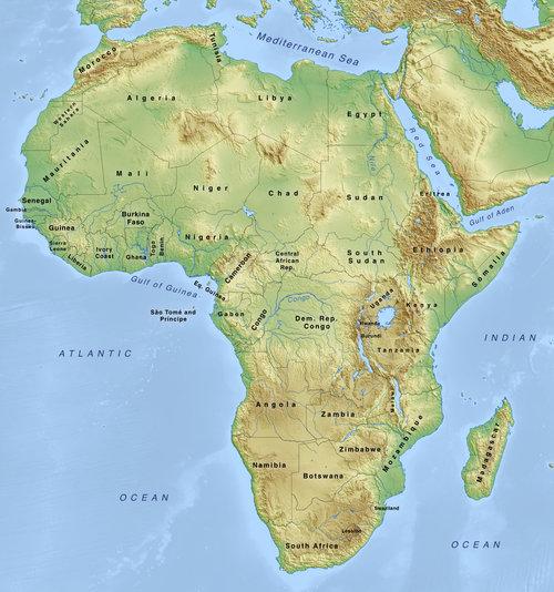 Take an African Safari