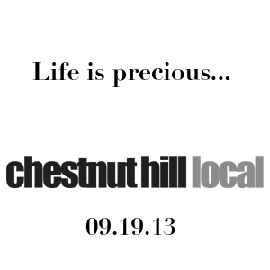 chestnut_09_19_13.png