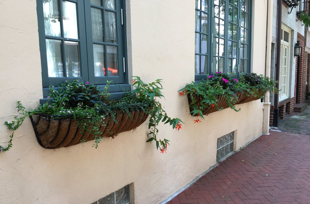 windowbox-old-city-philadelphia.jpg