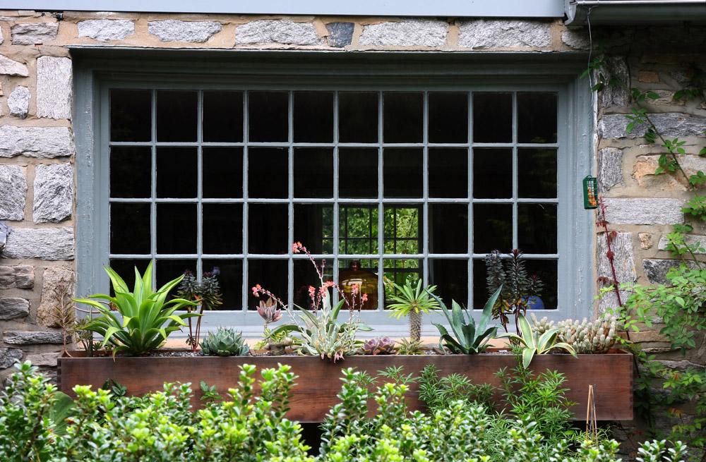 windowbox-swarthmore-andrew-bunting-landscaping.jpg