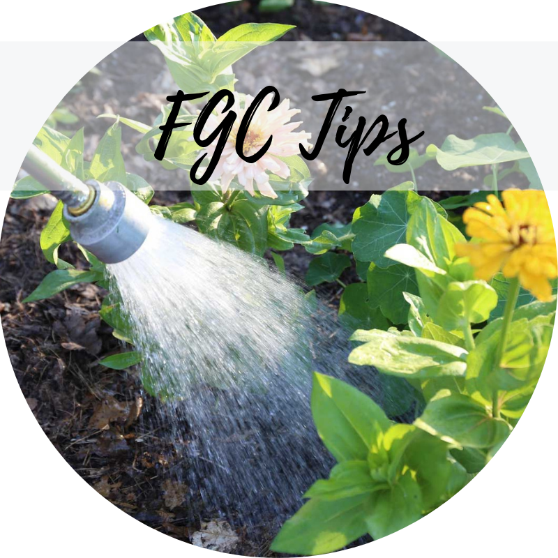 FGC Videos Presents - How to properly water you plants.