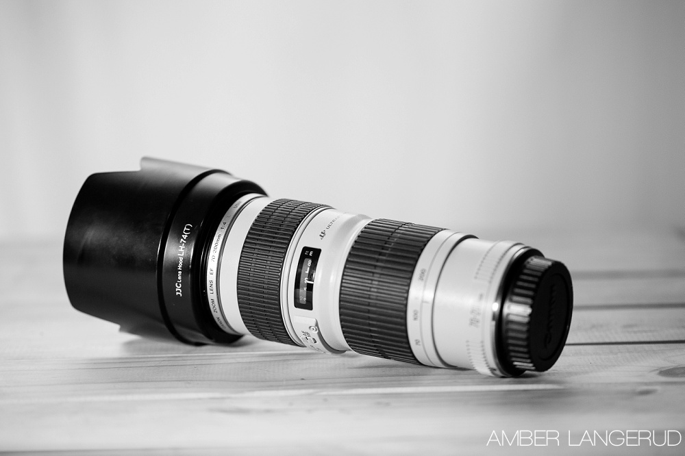 Lens Vacation Photography