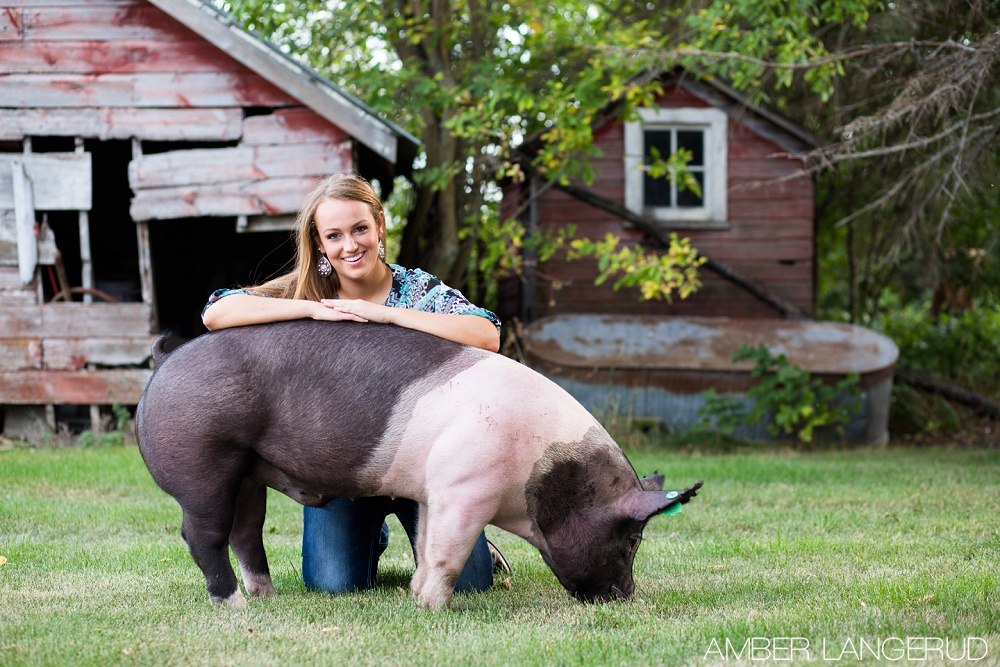 Country styled high school senior pictures with a pig and a sheep