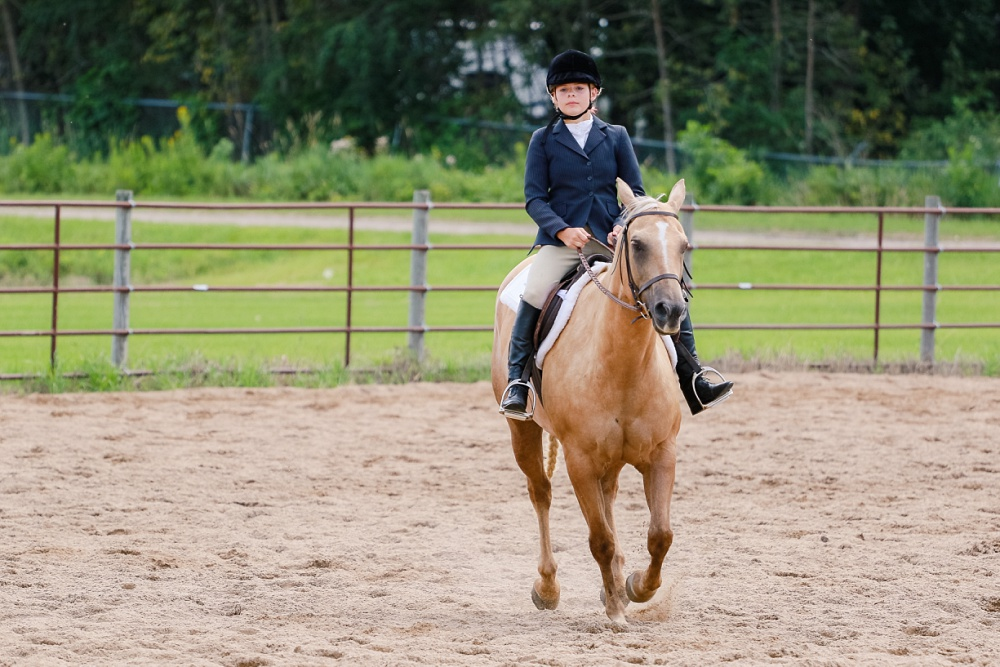 2016 Becker County 4-H Horse Show in Detroit Lakes, MN | English Equitation, Palomino Horse