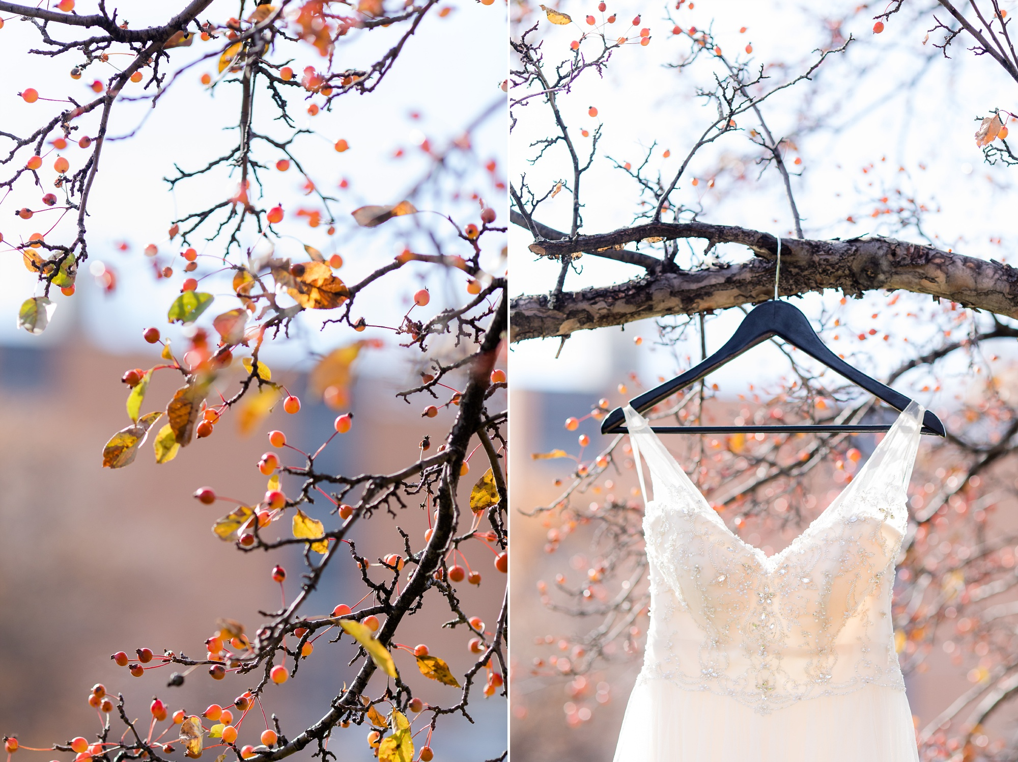 Classy, Rustic Styled Fall Wedding at the First Congregational Church of Christ and the Cambria Hotel & Suites | Dani & Alex | Photography by Amber Langerud Photography