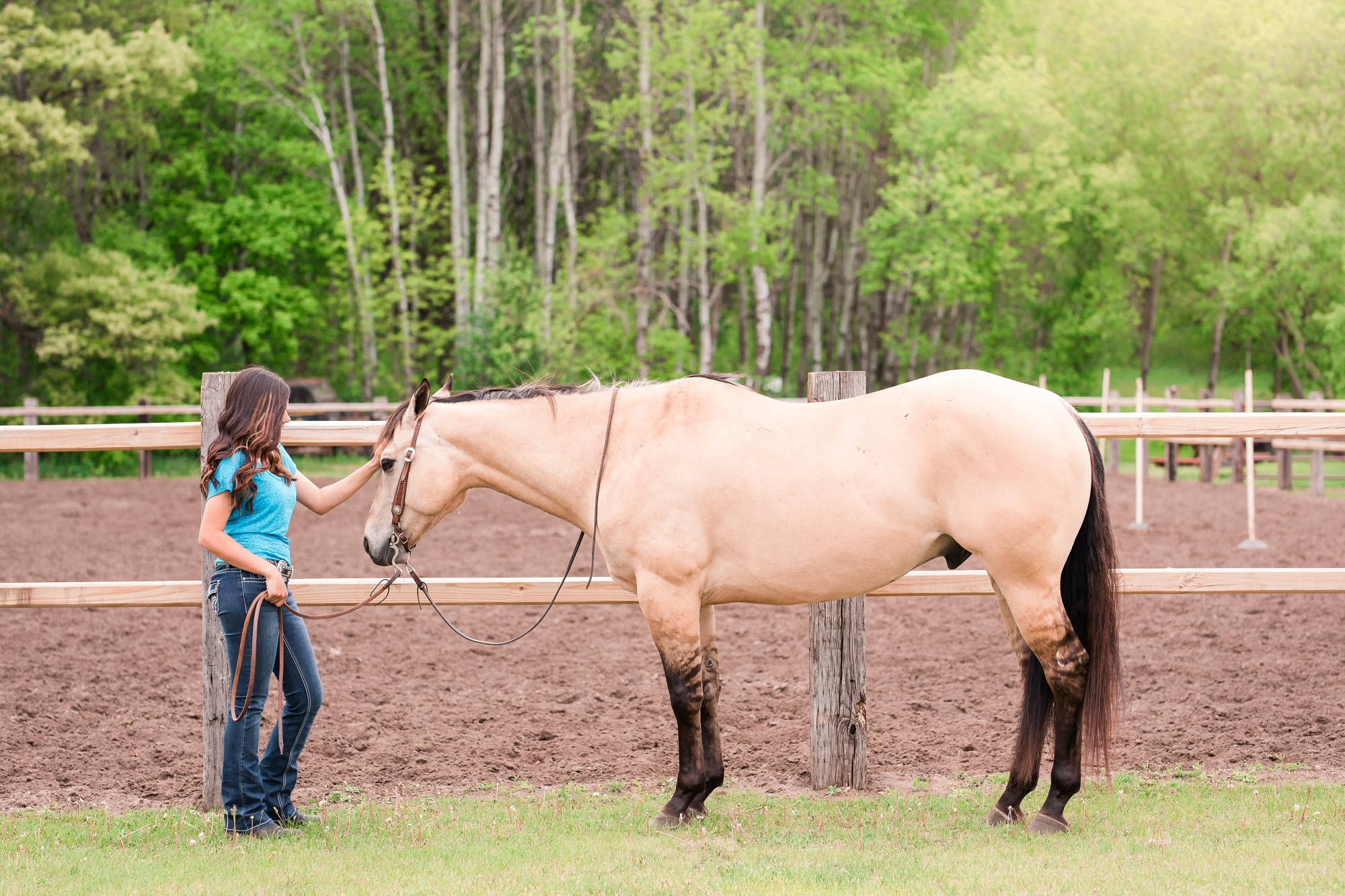 Country Styled, A Girl and Her Horse Session at Sandy Oaks Arena in Frazee by Amber Langerud Photography| Kayla