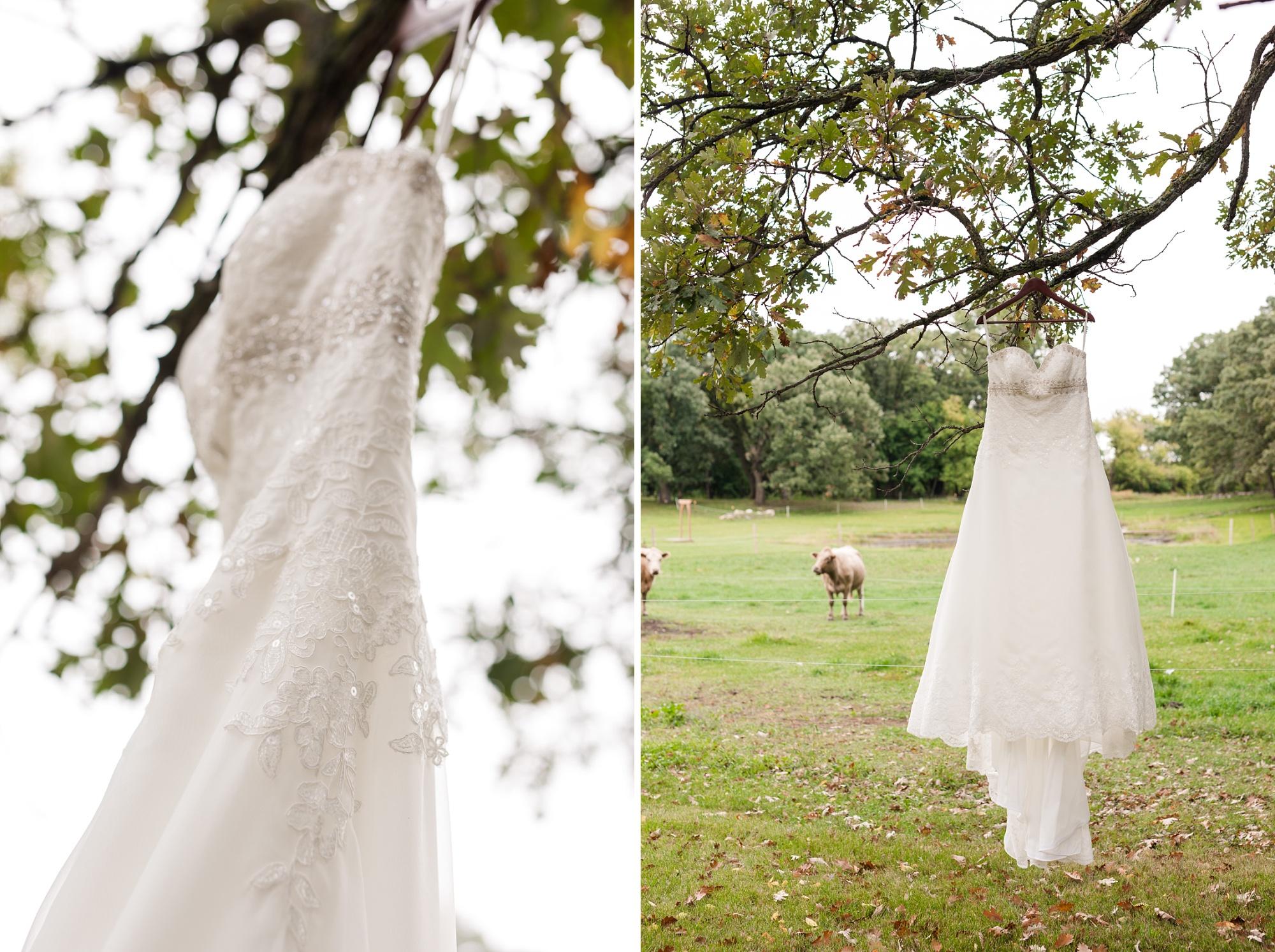 Amber Langerud_Lake Park MN Barn wedding at the Hitching Post_0404.jpg
