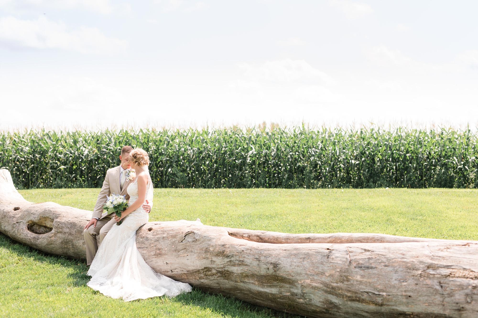 Amber Langerud Photography_Vintage Garden Minnesota Barn Wedding_5336.jpg