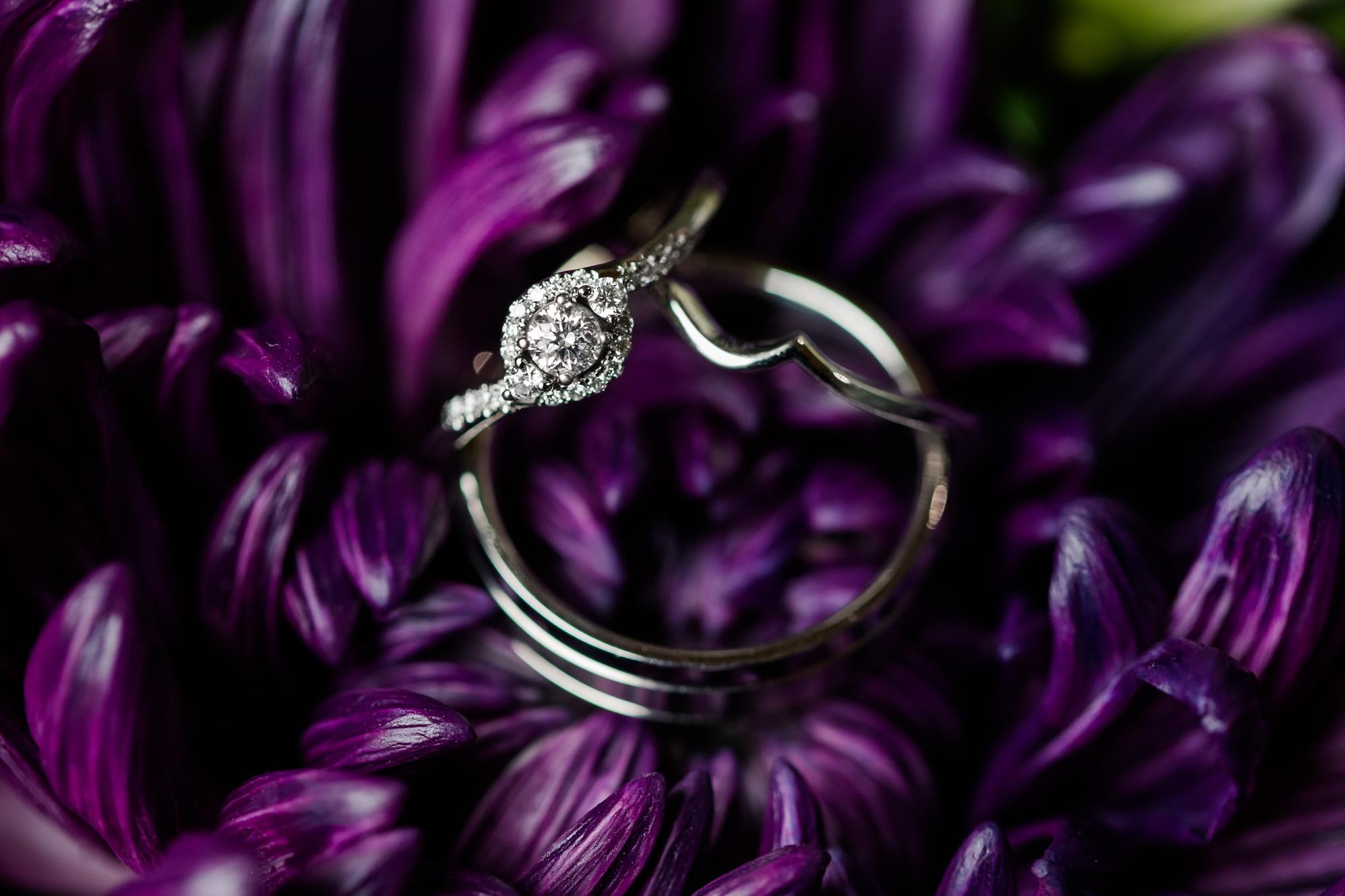 Amber Langerud Photography_Catholic Spring Wedding with Purple Accents_6297.jpg